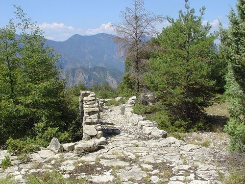 Cent ans de paysages