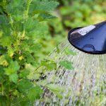 Arrêté préfectoral vigilance sécheresse