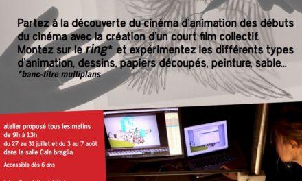 Atelier Cinéma d'animation du 27 juillet au 7 août
