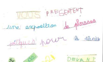 EXPOSITION DES MATERNELLES DE L'ECOLE